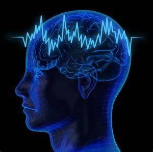 brain image #1